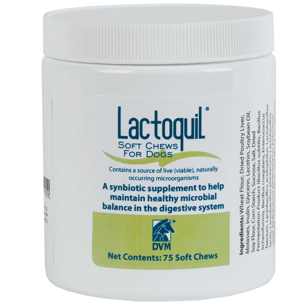 Lactoquil Soft Chews for Dogs (75 count)