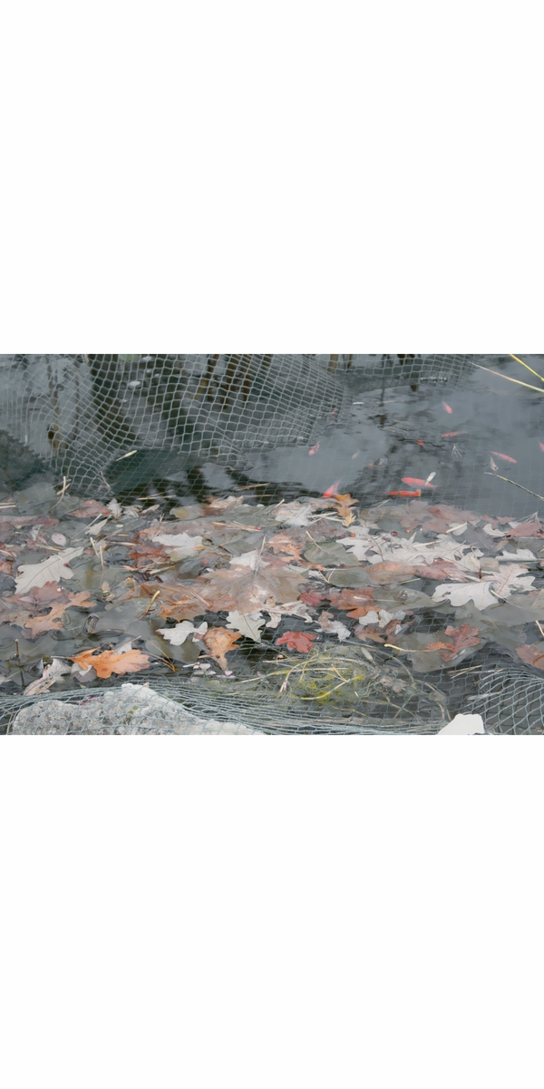 Laguna Pond Netting with stakes (15' x20') - Black