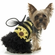 Leg Avenue Dog Costumes Daisy Bee Costume