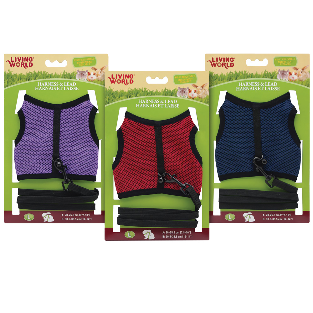 Living World Harness/Lead Large Assorted Colors