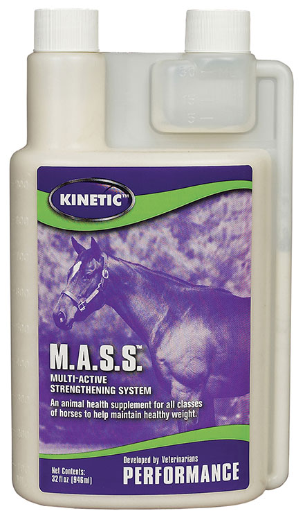 MASS - Multi-Active Strength System Liquid (Gallon)