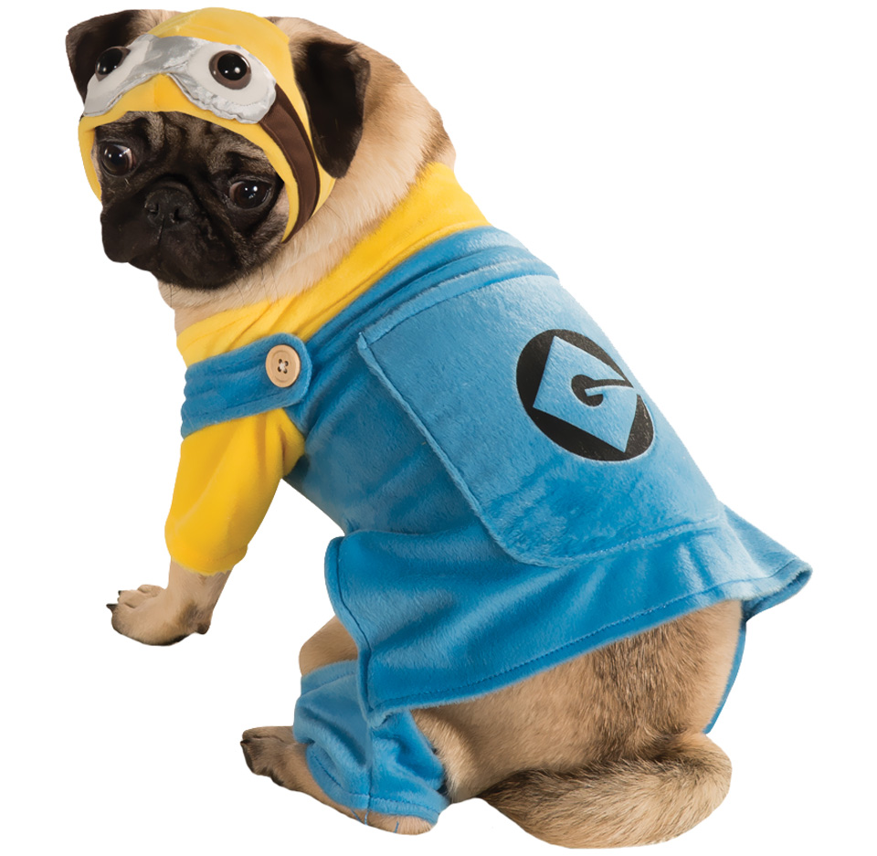 Minion Dog Costume - Small