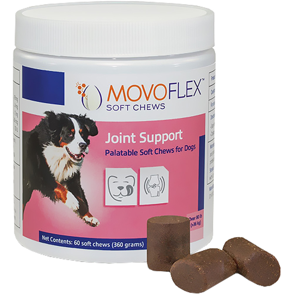 MovoFlex Joint Support for Dogs - Large (60 Soft Chews)