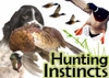 Natural Hunting Instincts