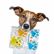 NEW & FREE EntirelyPets Coloring Book for Dogs & Cats!