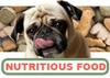 Nutritious Food for Your Pet