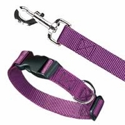 Nylon Adjustable Collars and Leashes