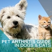 Pet Arthritis Guide
