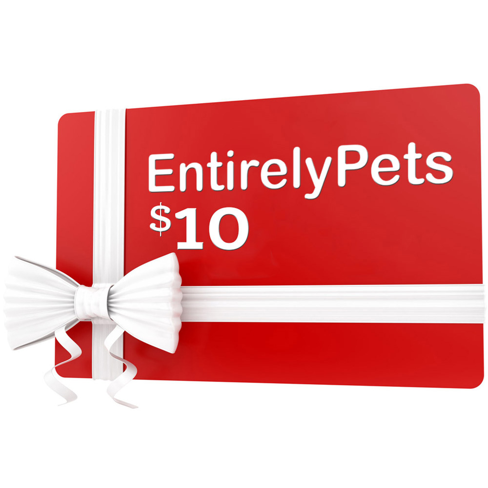 Pet Gift Ideas (For All Occasions)
