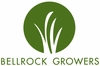 Pet Greens by Bell Rock Growers Inc.