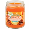 Pet Odor Exterminator Candle - Mandarin Spice Jar (13 oz)