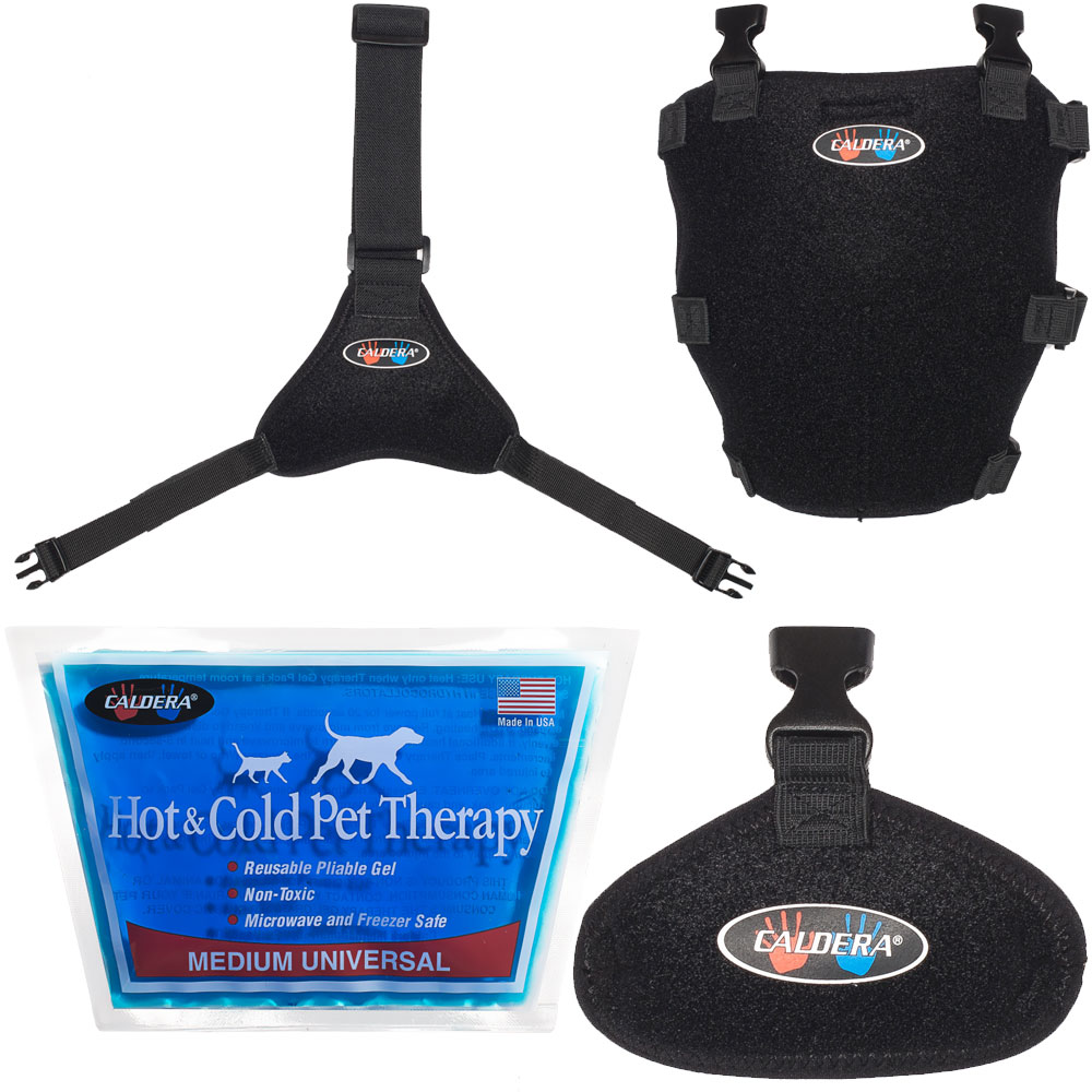 Pet Therapy Wrap with Therapy Gel - Tarsal (Medium)