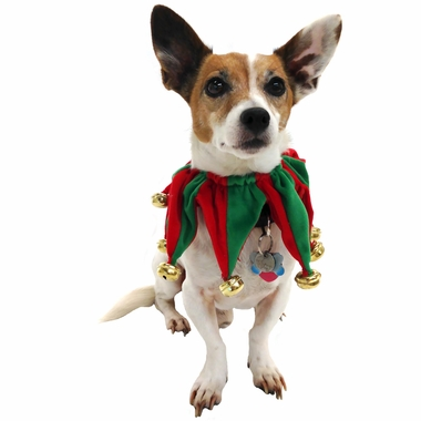 Pet Works Holiday Jester Collar with Bells - Large