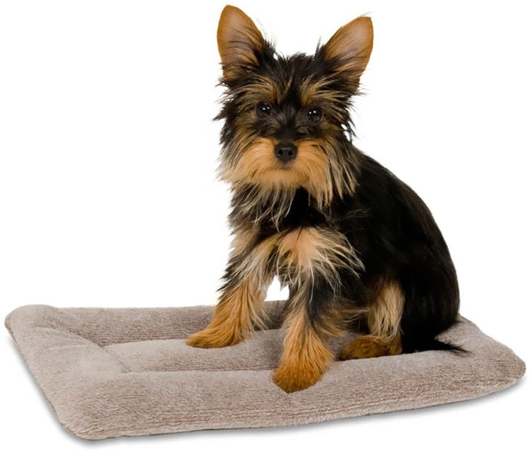 Petmate Kennel Pad
