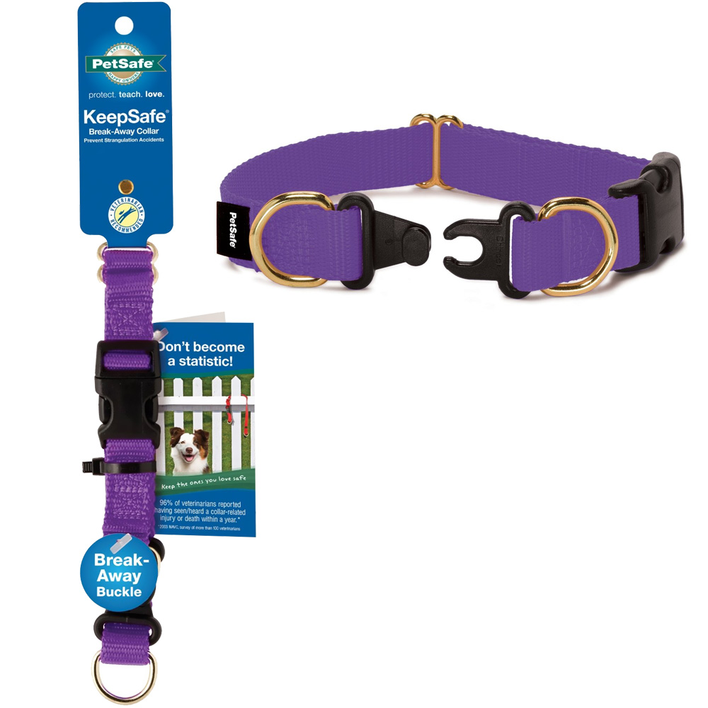 Petsafe KeepSafe Break-Away Collar Medium 1