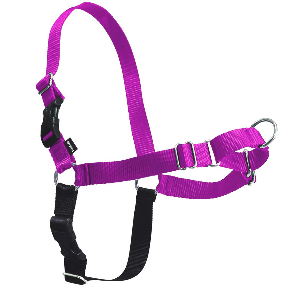 easy walk harness how to