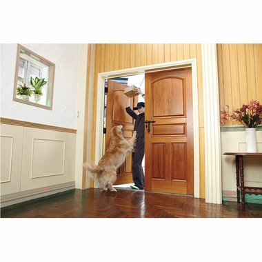 PetSafe Ultrasonic Indoor Bark Control