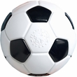 Planet Dog Orbee Tuff Soccer Ball