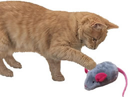 Play-n-Squeak Mouse