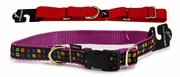 Premier Collars & Leashes