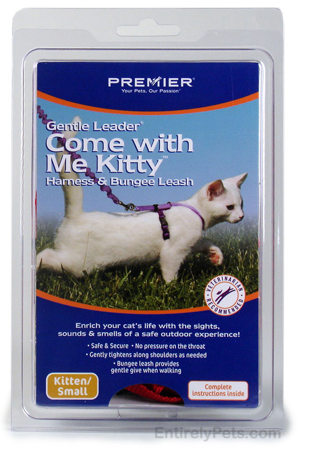 """Premier """"Come with Me Kitty"""" Cat Harness & Bungee Leash"""