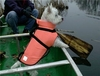 Premier Fido Float Swim Aid for Dogs