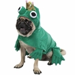 Prince Of Frogs Costume - SMALL