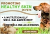Promoting Healthy Skin in Pets