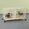 ProSelect Color Modular Cage with Plastic Tray