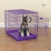 ProSelect Crates 30x19x22 Inch - Purple