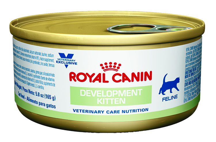 ROYAL CANIN Feline Development Kitten Can (24/5.8 oz)