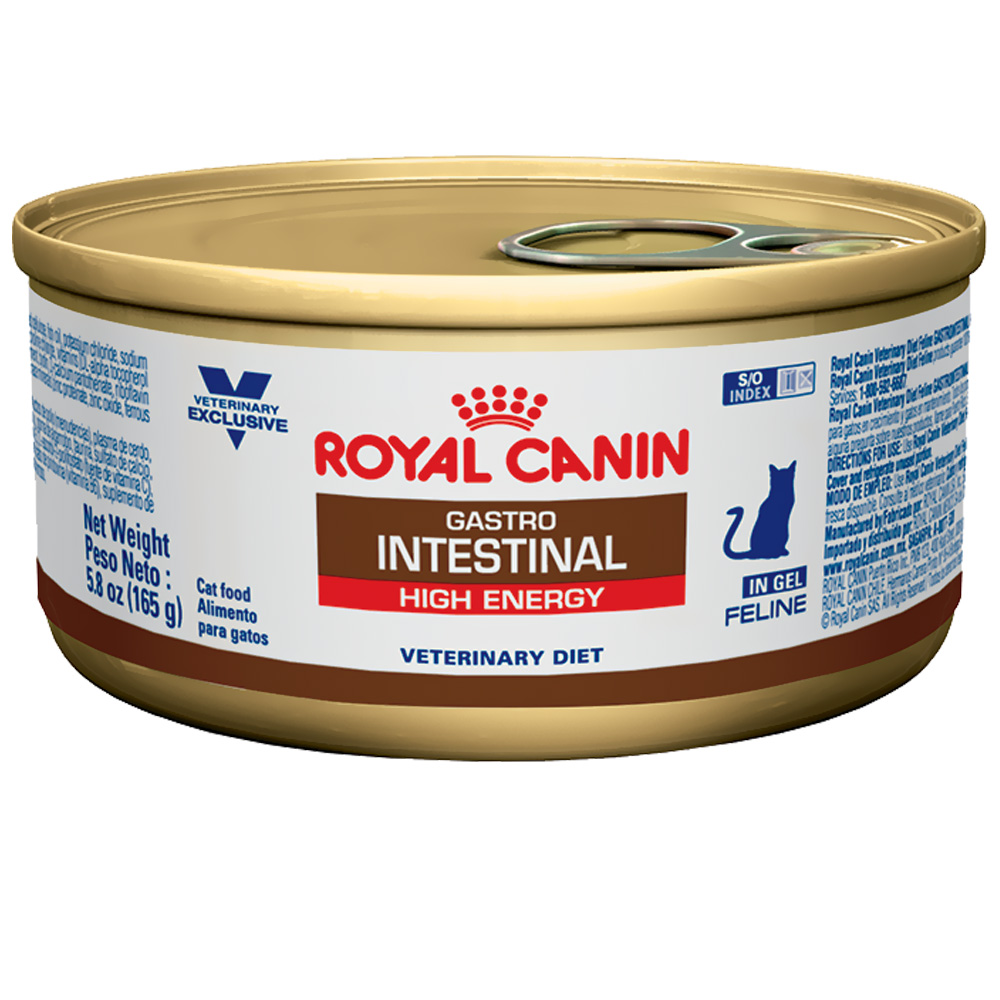 ROYAL CANIN Feline GastrointestinaI High Energy Can (24/5.8 oz)