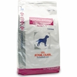 ROYAL CANIN Veterinary Diet Hypoallergenic Selected Protein PV for Canine (17.6 lbs)