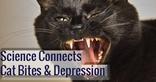 Scientific Study Links Cat Bites And Depression