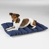 Slumber Pet Travel Futon Mats - Green 21x16