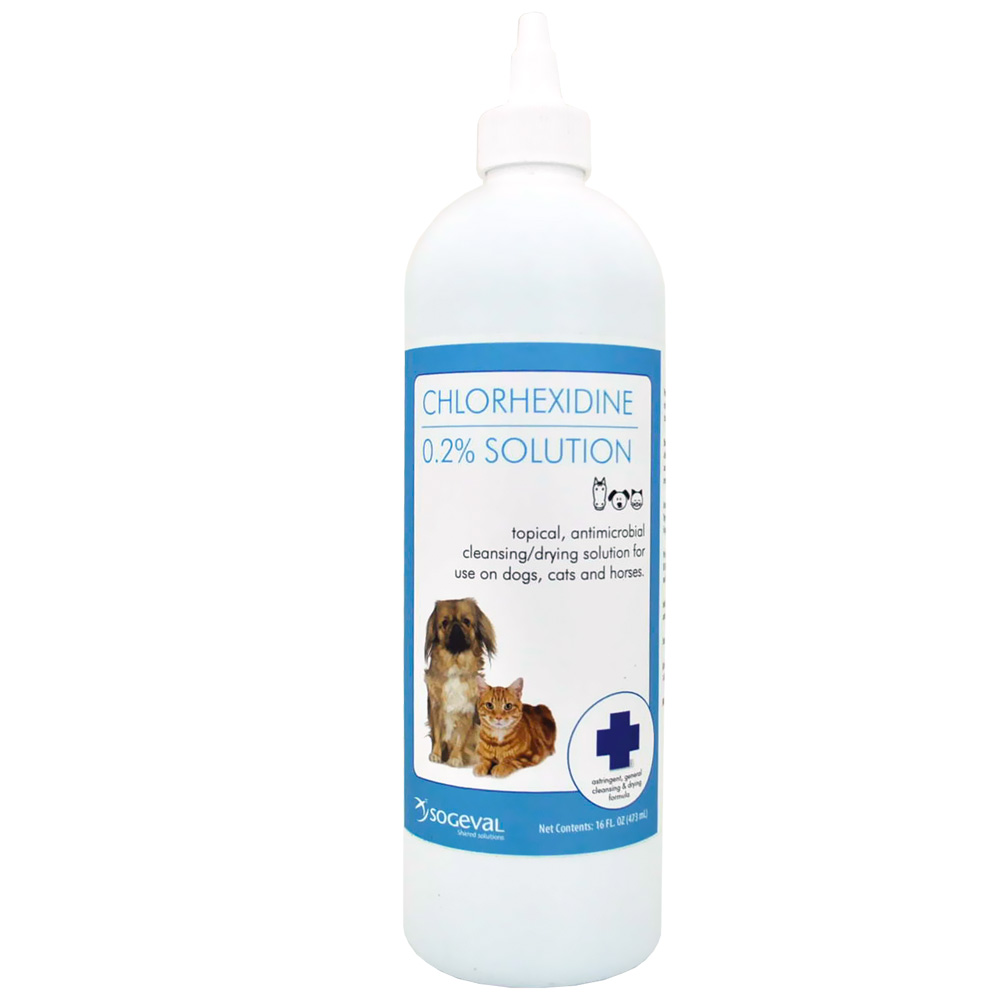 Sogeval Chlorhexidine Flush 0.2% Solution (16 oz)