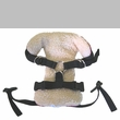 Solvit Pet Vehicle Safety Harness (Small)