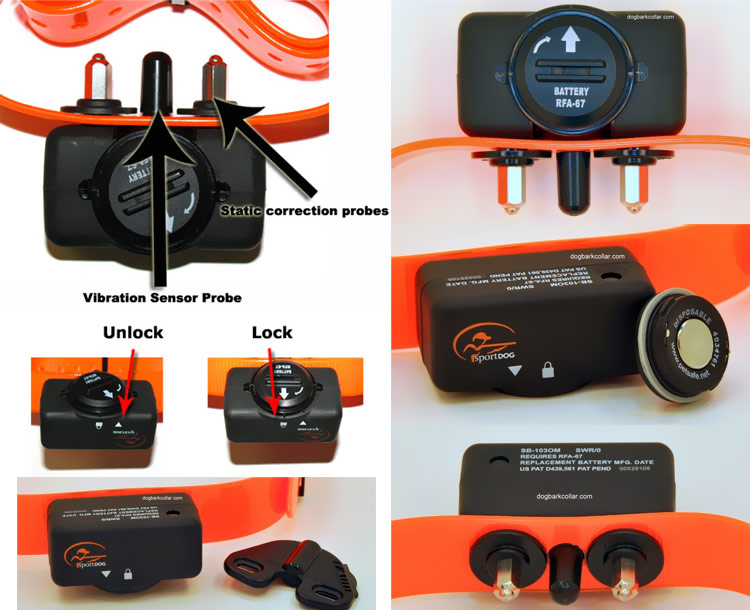 SportDOG Bark Control Collar - 6 Levels