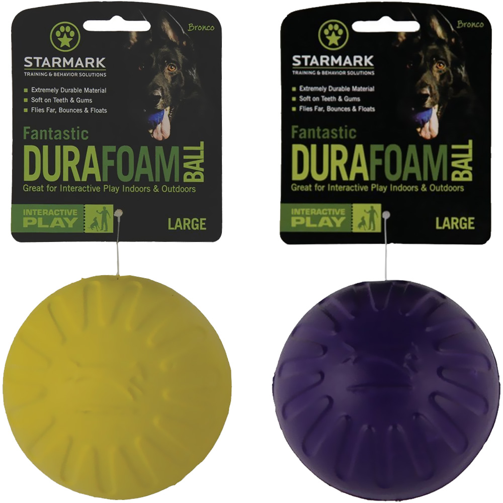 Starmark Fantastic DuraFoam Ball (Large) - Assorted