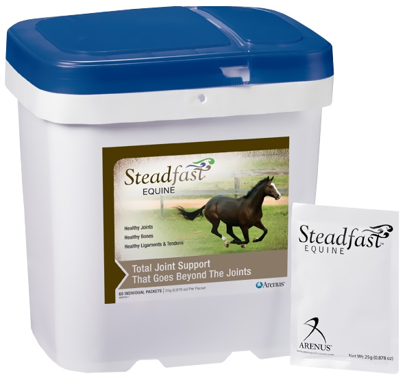 Steadfast Equine (60 count)