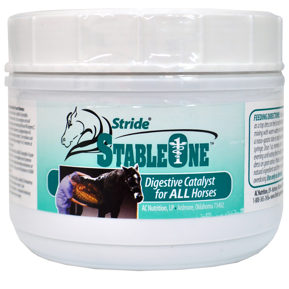 Stride StableOne Powder (14 oz)