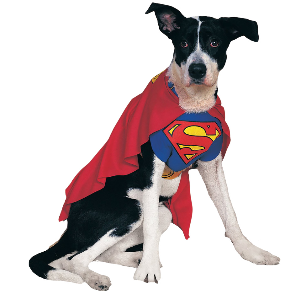 Superman Dog Costume - Small