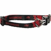 Tampa Bay Buccaneers Dog Collars & Leashes