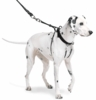 The Sporn Pull Stop Halter Leash BLACK