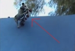 This Dog Takes Extreme Sports to the Next Level!! Absolutely Amazing!