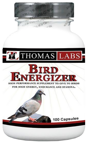 Thomas Labs Bird Energizer (100 count)