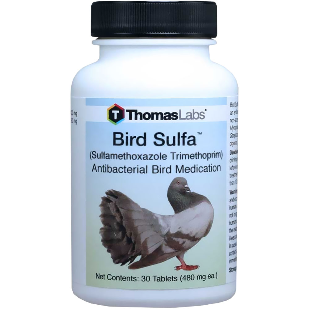 Thomas Labs Bird Sulfa