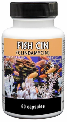 Thomas Labs Fish Cin 150mg (60 count)