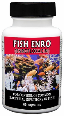 Thomas Labs Fish Enro 25mg - Enrofloxacin (60 capsules)