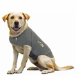 Thundershirt Dog Anxiety Solution